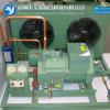 Unidade de condensação do Refrigeration de Bizter para o congelador