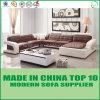 تصميم حديثة يعيش غرفة جلد ركب أريكة
