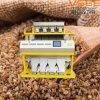 Sorter di colore del CCD per grano saraceno nella macchina fotografica del Canada Nikon