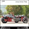 EEC del automóvil descubierto 250cc de Ztr Trike