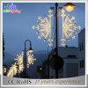 Lumière décorative de motif extérieur de décoration de rue de l'homologation DEL de CE/RoHS