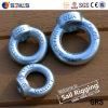 Tuerca de anillo de hierro galvanizado eléctrico (DIN 582)
