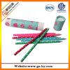 Sistema de madera del lápiz del color, efectos de escritorio promocionales fijados (P002)