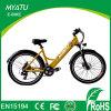 Madame électrique neuve Sport Bicycle avec l'étalage Commutateur-AFFICHAGE À CRISTAUX LIQUIDES