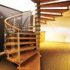 Escalier spiralé intérieur de fer travaillé avec la balustrade en acier