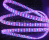 LED Rope Light (4WIRE-MULTICOLOR)