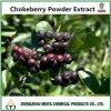 Hot Sale Chokeberry Extrait de la poudre d'anthocyanine 10% 15% UV