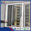 جديدة تصميم اللون الأخضر [فيبرغلسّ] نافذة شامة