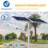 Lumière extérieure Integrated/complète de jardin de rue du détecteur solaire DEL