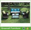 Wicker мебель сада