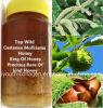 蜂蜜、まれで、貴重な抗癌性の、汚染Antiaging、美の皮重金属、抗生物質の蜂蜜の上の野生のCastanea Mollissimaか王は、血を養わない