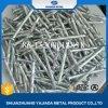 De verdraaide Gegalvaniseerde Steel nagelt Staal Masonary