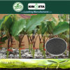 Il carbonio di alta qualità di Kingeta ha basato il fertilizzante composto NPK 15-15-15