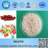 Gelatin granulado para cápsulas vazias da fabricação