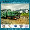 販売のためのSinotruk Hohan 10の車輪のダンプトラック