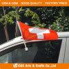 Bandierina/bandiera su ordinazione dell'automobile del poliestere della visualizzazione