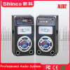 Shinco neues Produkt professioneller Multi-Media aktiver Bluetooth Lautsprecher