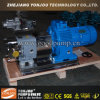 Rotor-Pumpe