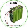 Li-ion 18650 het Pak van de Batterij 11.1V 2600mAh uitz. 9.6V 1100mAh