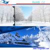 Ventes chaudes P5 HD et écran polychrome d'intérieur de la qualité DEL