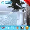 Nuevo diseño de la cuenca del frío y caliente del grifo de China (BF-B10067W)
