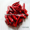 Hot Dried Bullet Chilli Red Peppers