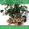 100% натуральная кожа арахиса извлечения (передаточное число: 4: 1~20: 1)