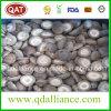 Cogumelo Frozen IQF com Certificado Brc