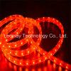 Luz de tira de la luz de la Navidad del alto brillo 110/220V SMD LED