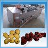 Dénoyauteur multifonctionnel électrique automatique d'olive de légume et de fruit