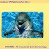 Cartão de aquário feitas com tarja magnética de PVC