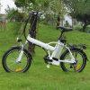 señora plegable E Bike de 20inch Ebike