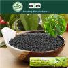 Il carbonio di Kingeta ha basato il fertilizzante composto NPK 28-6-6 per la verdura