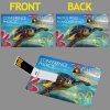 Carta di credito, biglietto da visita, azionamento della penna del USB di figura del biglietto da visita