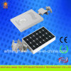 Haute énergie Newest Design Solar DEL Street Light 12W