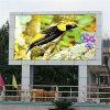 Visualización de LED publicitaria a todo color al aire libre de P8 SMD