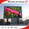 Pantalla de visualización a todo color al aire libre directa de LED de la INMERSIÓN P6 de las ventas