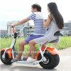 2018 motocicleta elétrica do trotinette 1000W do pneu gordo com assentos dobro