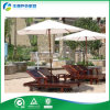 티크 정원 Furniture, Outdoor Furniture - Armrests (FY-006CB)를 가진 Ergonomical Lounger