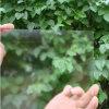 1.52.2mm Ce en AS/NZS2208 van het Glas niet van de Glans: 1996