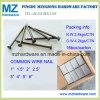 1  2  2.5  3  4  hanno lucidato il chiodo comune galvanizzato del collegare del ferro