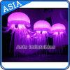 Allumage des méduses gonflables avec l'éclairage LED de Chageable de couleur