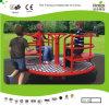 Kaiqi Allegro-Va-Round Toy per Playground del Children (KQ50158D)
