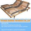 Orthopädisches elektrisches Bett (EM-09#)