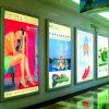 Wandelgalerij die LEIDENE Lichte Doos adverteren