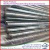 Volledig Roestvrij staal 304 van de Draad De Ingepaste Staaf van Koolstofstaal 316 Q235, M10X3000