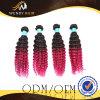 Ombre 색깔 Virgin 인도 아프로 컬 사람의 모발