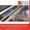 Film chaud de laser de polyester de Rrainbow de vente