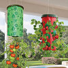 Vertikaler Garten Wall Planter Grow Bag Planter Wall Planter Bag Growing Bags für Plants für Tomato