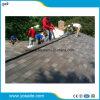 Fiberglas-niedriges Dach-dekorative Asphalt-Schindeln